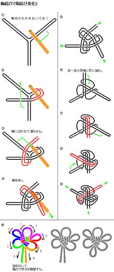 knots-梅結び(菊結び変化結び).gif