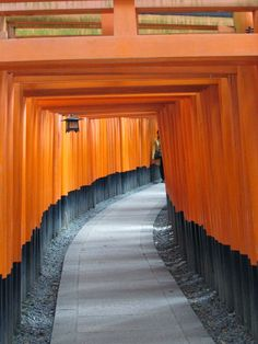 Fushimi Inari Shrine in Kyoto Japan--Things to do in Kyoto!