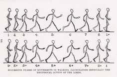 Image result for walk chart animation