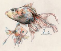 So its just some fish swimming around. I used only 4 colored pencils (Col-Erase) for it. Little Fish, Big Fish.swimming in the water! Crayon Drawings, Fish Drawings, Animal Drawings, Colored Pencil Tutorial, Colored Pencil Techniques, Watercolor Drawing, Painting & Drawing, Reference Photos For Artists, Colorful Rangoli Designs