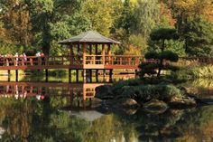 Have you already been to Japanese Garden in Wrocław? This unique place is open every day 9 am - 7 pm. Located in Szczytnicki Park.