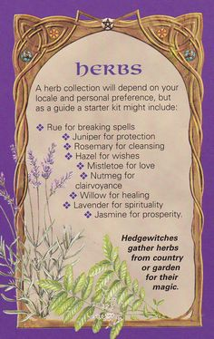 90 Best witch herbs images in 2019 | Herbalism, Magick