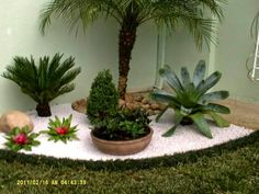 Jardim Patio Garden, Front Garden Landscape, Garden Decor, Bromeliads Garden, Garden Decor Projects, Stone Landscaping, Outdoor Gardens Design, Small Garden Landscape, Rock Garden Landscaping
