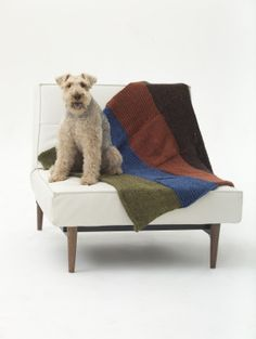 Happy National Dog Day! This is Barkley, one of the LB dogs, with his favorite handmade blanket!    Get the free knit pattern and make one for your best friend with 8 skeins of Heartland Thick & Quick in 4 bold beautiful shades - use brown, rust, blue, and green, or choose colors to complement your decor! Pattern calls for size 11 (8 mm) knitting needles.