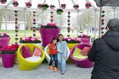 fotoshoot with cute seats with cyclamen Super Serie