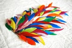 homemade feather bird wings