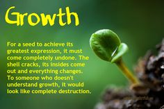 Growth | For a seed to achieve its greatest expression, it must come completely undone. The shell cracks, its insides come out and everything changes. To someone who doesn't understand growth, it would look like complete destruction.
