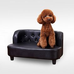 Pawhut  Indoor Pet Sofa Chair Cat Dog Kitten Furniture Soft PU Leather Retro Couch Bed Seater Buttoned Desi No description (Barcode EAN = 5055974829138). http://www.comparestoreprices.co.uk/december-2016-4/pawhut-indoor-pet-sofa-chair-cat-dog-kitten-furniture-soft-pu-leather-retro-couch-bed-seater-buttoned-desi.asp