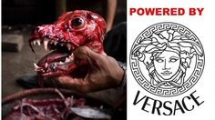 Countless dogs skinned while still CONSCIOUS for 'trendy' VERSACE garments! SIGN NOW! | YouSignAnimals.org