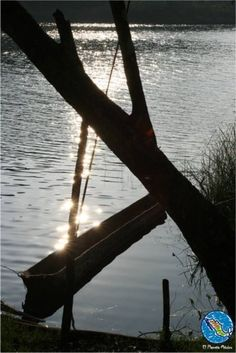 Secret spots within the Lacandon forest / Lugares secretos en la Selva Lacandona