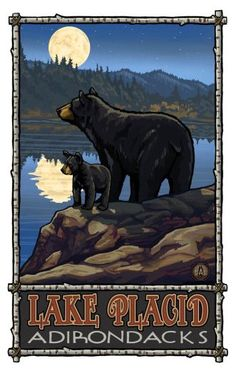 Northwest Art Mall 11 x Poster Lake Placid Bar & Cub with Moon Adirondacks… National Park Posters, National Parks, Red River New Mexico, Bear Art, Le Far West, Rocky Mountain National Park, Vintage Travel Posters, Poster Vintage, Rocky Mountains
