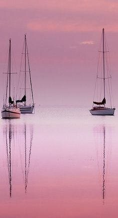 Pink Dawn by MazzaPix - More at http://www.flickr.com/photos/mazzapix/ (Thx Debra)