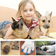 200Pcs/Lot Colorful Soft Pet Dog Cats Kitten Paw Claws Control Nail Caps Cover Size XS S M L XL XXL Hot Free Shipping