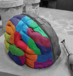 3d hand models made out of clay | Learning sculpts our spontaneous resting brain activity.