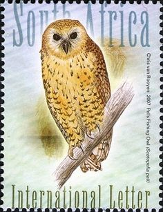 Stamps showing Pel's Fishing Owl Scotopelia peli, with distribution map showing range Old Stamps, Vintage Stamps, Vintage Comic Books, Vintage Comics, South African Birds, Postage Stamp Collection, World Birds, Animal Totems, African Animals