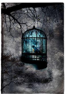 Blue bird in blue world ~ Color splash,,,