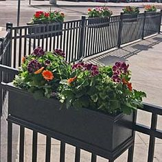 black railing planters on metal fence at local restaurant outdoor seating area black railing planter Deck Railing Planters, Balcony Planters, Patio Fence, Deck Railings, Black Railing, Balcony Ideas, Porch Planter, Black Fence, Pool Fence