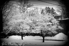 Snow in Clinton, ma