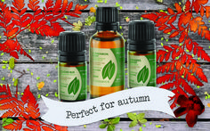 #Sweet & Spicy Autumnal #Essentialoils  Essential oils are a very important part of our company; we spend a lot of time working hands on with hundreds of different varieties of #oils and have become accustomed to a few in particular that warm our cockles during the #autumn, so to speak. http://journal.enaissance.co.uk/2015/08/27/sweet-spicy-autumnal-essential-oils/