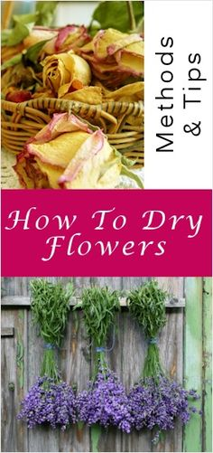 tips for drying flowers
