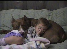 Safest nap ever!