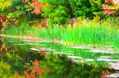 New print available on lanjee-chee.artistwebsites.com! - 'Autumn with colorful foliage and water reflection 17' by Lanjee Chee - http://lanjee-chee.artistwebsites.com/featured/autumn-with-colorful-foliage-and-water-reflection-17-lanjee-chee.html via @fineartamerica