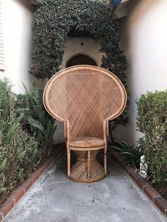 Wicker Peacock Chair for Sale in Santa Ana, CA - OfferUp Peacock Chair For Sale, Rattan Peacock Chair, Wicker Dining Chairs, Wicker Furniture, Furniture Ideas, Hanging Plants, Plants Indoor, Wedding Chairs, Chairs For Sale