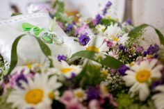 Ringkissen im Blumenbett