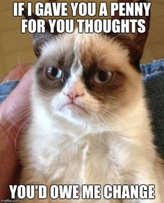 Grumpy Cat   IF I GAVE YOU A PENNY FOR YOU THOUGHTS YOU'D OWE ME CHANGE   image tagged in memes,grumpy cat   made w/ Imgflip meme maker