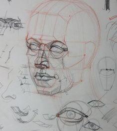 Fabulous Drawing On Creativity Ideas. Captivating Drawing On Creativity Ideas. Human Anatomy Drawing, Human Figure Drawing, Figure Drawing Reference, Anatomy Art, Anatomy Reference, Pose Reference, Drawing Skills, Drawing Lessons, Art Lessons
