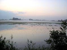 neblina  OLYMPUS DIGITAL CAMERA