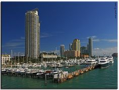 South Beach Marina (Miami Beach, Florida)