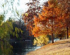 Boerne is so pretty in fall.