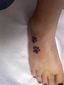 definitely want something like this with bradys paw prints
