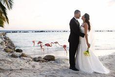 Aruba Wedding by Alexandra Meseke Photography  Read more - http://www.stylemepretty.com/destination-weddings/2011/11/22/aruba-wedding-by-alexandra-meseke-photography/