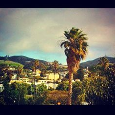 Ventura, California - where my father was born while the family was there for a few years before returning to Guatemala...
