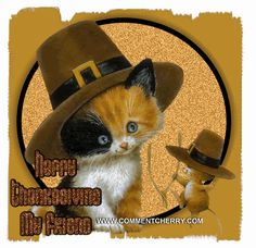 Google Image Result for http://www.montessoricats.com/Thanksgiving-CatMouse.gif