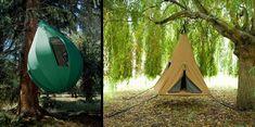 Wild Tents!