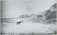Burleigh Point in 1871. One of the earliest know photographs of Burleigh.