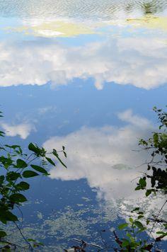 sky reflection at mass audubon, norfolk, ma