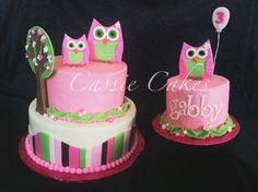 Owl cake with owl smash cake