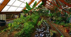 Connaissez-vous le walipini : une serre semi-enterrée ? | Build Green