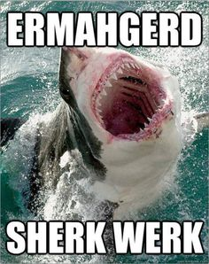 Shark Week is Overrated