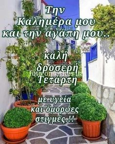 Greek, Outdoor Structures, Plants, Plant, Greece, Planets