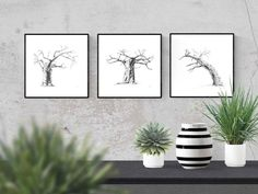 Black and white wall art prints of baobab trees for your living room or bedroom. Visit my Etsy store to shop my range of prints and print sets inspired by African nature.  #etsy #DIY #livingroom #bedroom #ideas #simple #large #blackandwhite #joshua #desert #nature #prints #decor #bathroom #kitchen #minimalist #sets #minimal #modern #tree Tree Wall Art, Wall Art Decor, Wall Art Prints, Giraffe Drawing, Baobab Tree, Insect Art, Black And White Wall Art, Tree Print, Nature Prints