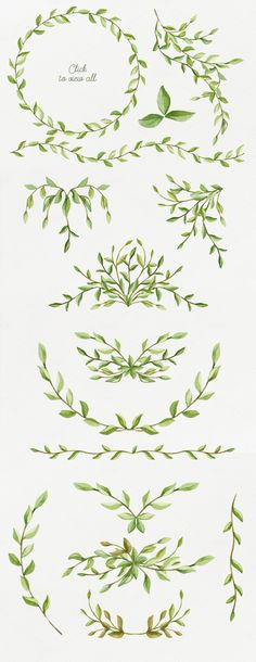 Foliage. Elegant floral set by NataliVA on Creative Market