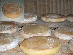 Antiguas Tortas de la Serena, queso elaborado con la flor de cynara