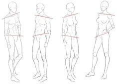 Drawing Female Body, Body Reference Drawing, Anatomy Reference, Art Reference Poses, Art Poses, Drawing Poses, Drawing Lessons, Drawing Techniques, Body Sketches