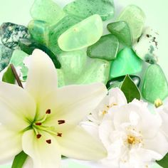 Jade fragrance oil by Natures Garden scents is a floral scent that smells like sweet jasmine and soft florals. You will love our wholesale fragrances. Candle Making Supplies, Soap Making Supplies, Wholesale Fragrance Oils, Clean Fragrance, Aroma Beads, Candlemaking, White Lilies, Natural Garden, Bath And Body