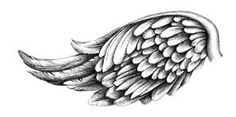 angel wing drawing - Google Search